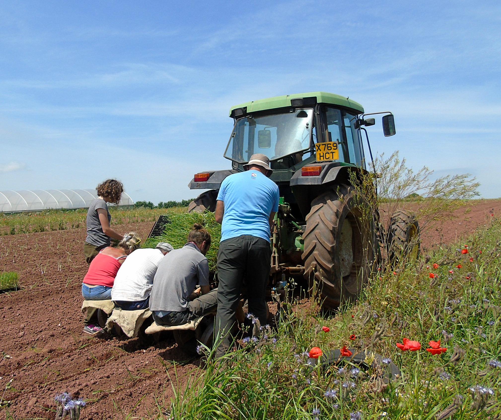 Food, Farming & Countryside RSA Commission