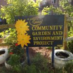 St Sidwell's Garden