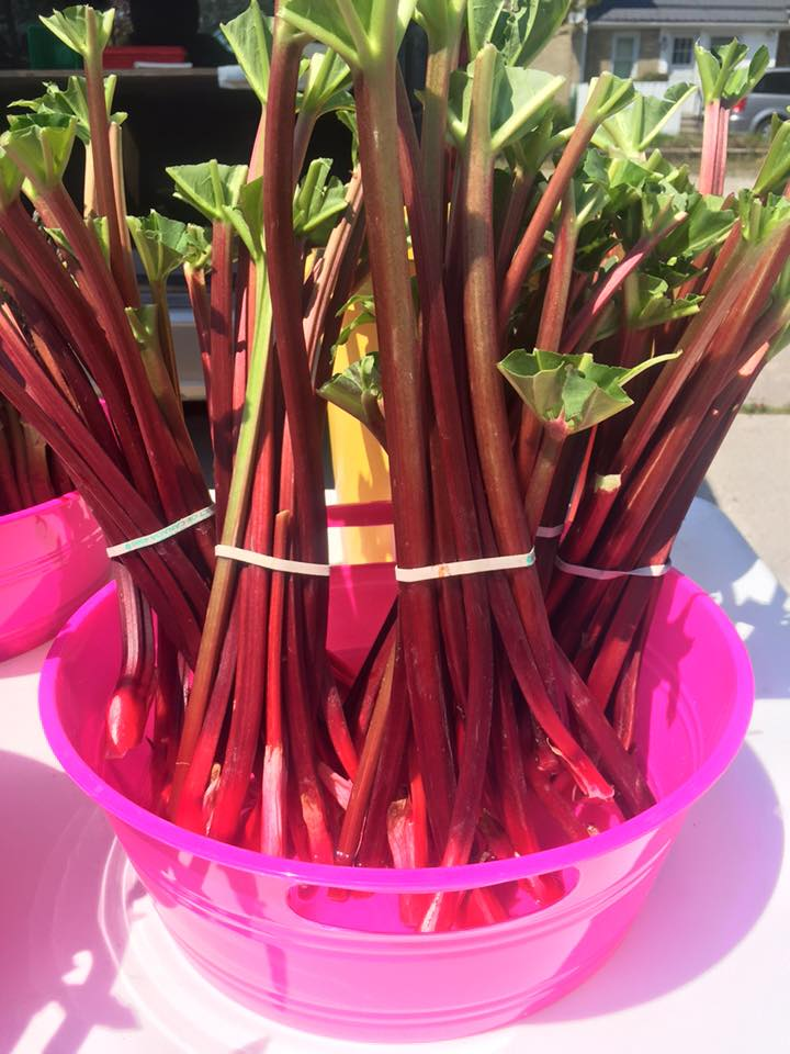 Market rhubarb